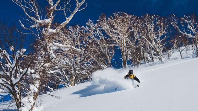 Un séjour free ski sur les pentes de l'île d'Hokkaido au Japon