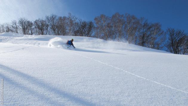 Une qualité de neige incroyable pour ce séjour ski freeride au Japon